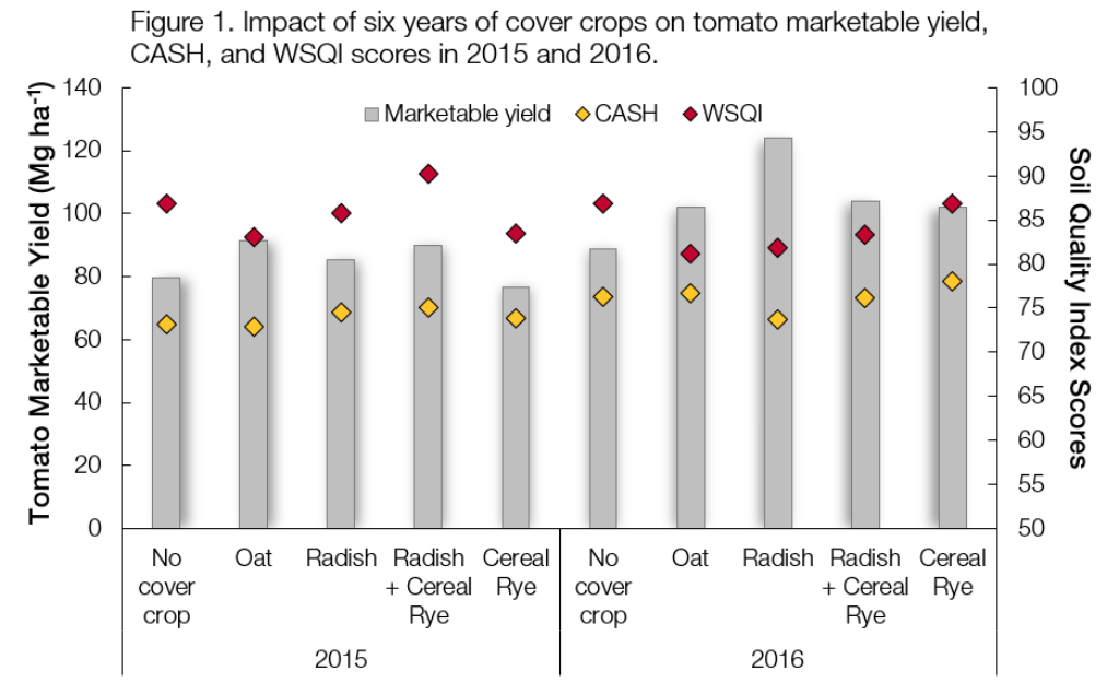 Figure 1. Impact of six years of cover crops on tomato marketable yield, CASH, and WSQI scores in 2015 and 2016.