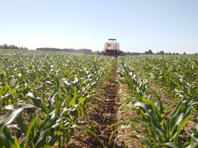 Tractor applying a sidedress nitrogen application to corn