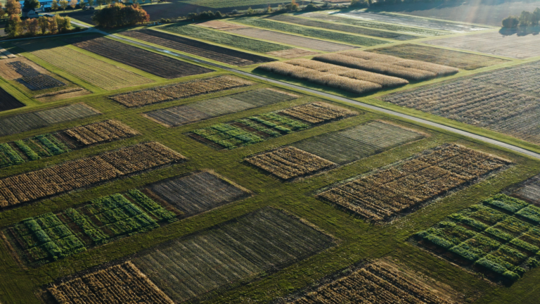Aerial view of crop rotation research plots